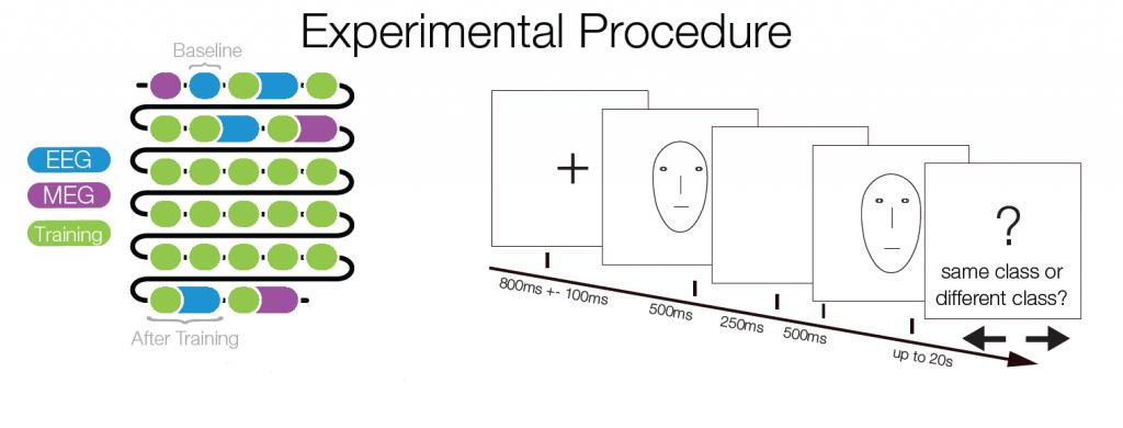 experimentalprocedure